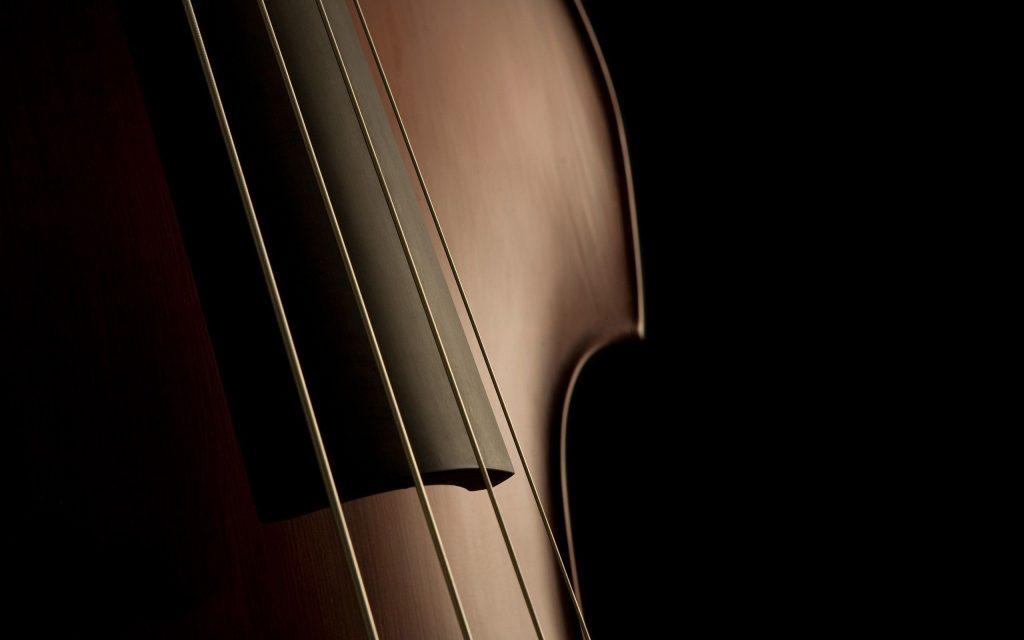 Contrabajo Jonhstone Music